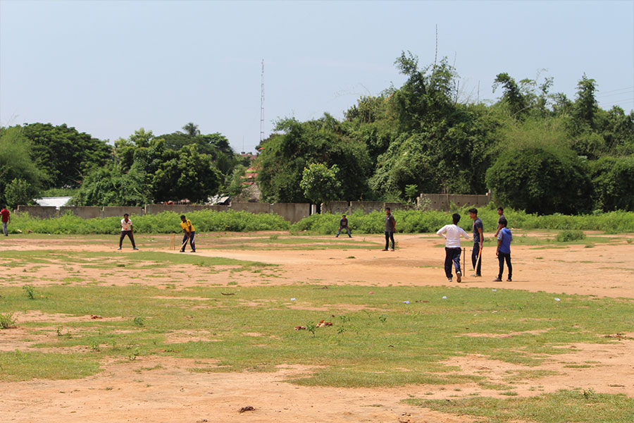 cricket-match